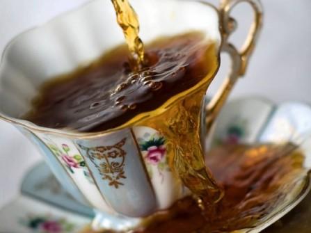 teacup-583x437